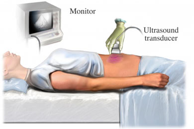 Ultrasound Imaging at CSSA